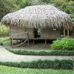 Museo de la Cana de Azucar turismovalledelcauca (8)