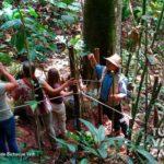 15-foto-bichacue-yath-turismo-valle-del-cauca