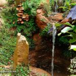 4-foto-bichacue-yath-turismo-valle-del-cauca