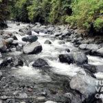 4-foto-reserva-natural-anahuac-turismo-valle-del-cauca
