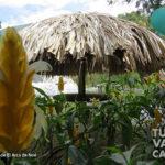 7-foto-el-arca-de-noe-pance-cali-turismo-valle-del-cauca