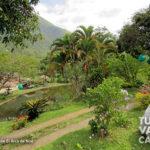 8-foto-el-arca-de-noe-pance-cali-turismo-valle-del-cauca