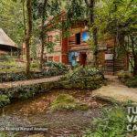 8-foto-reserva-natural-anahuac-turismo-valle-del-cauca