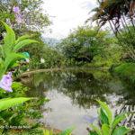 9-foto-el-arca-de-noe-pance-cali-turismo-valle-del-cauca