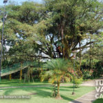 11-foto-las-brisas-balneario-jamundi-turismo-valle-del-cauca