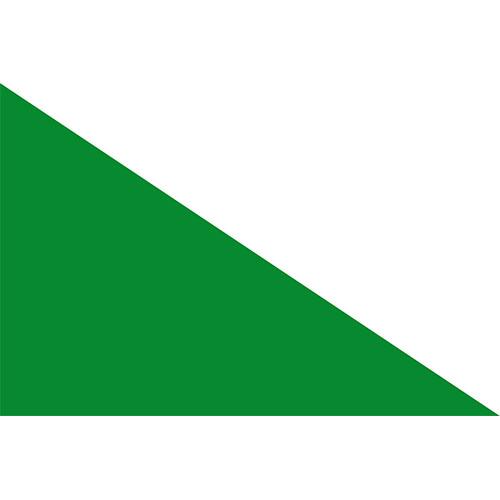 Bandera muncipio la victoria turismo valle del cauca colombia