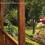 Foto la reserva nacional forestal bosque de yotoco turismo valle del cauca colombia (18)