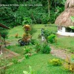 Foto la reserva nacional forestal bosque de yotoco turismo valle del cauca colombia (25)