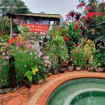 Hostal la lolita municipio el cairo turismo valle del cauca colombia (16)