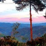 Hostal la lolita municipio el cairo turismo valle del cauca colombia (7)