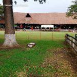 La tinaja restaurante palmira turismo valle del cauca colombia (4)
