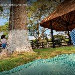 La tinaja restaurante palmira turismo valle del cauca colombia (6)