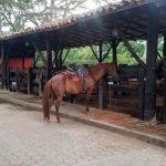 La tinaja restaurante palmira turismo valle del cauca colombia (7)