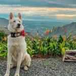 Ruhe glamping vijes turismo valle del cauca colombia (8)