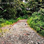 San cipriano buenaventura turismo valle del cauca colombia (14)